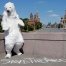Save the Arctic en Russie