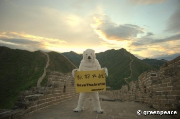 Save the Arctic en Chine