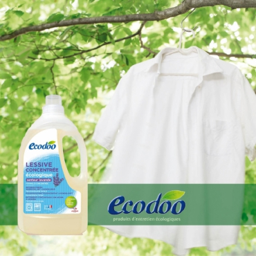 Lessive écologique Ecodoo      www.ecodoo.ch